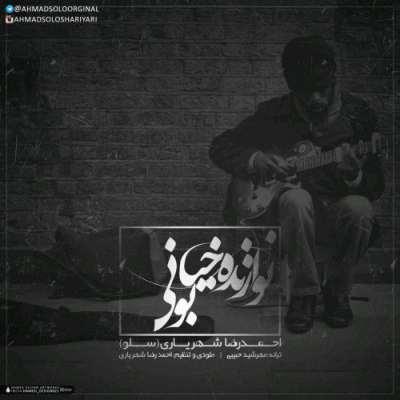 دانلود آهنگ احمد سلو بنام نوازنده خیابونی